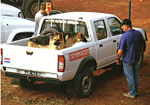 Dog Detection Transport